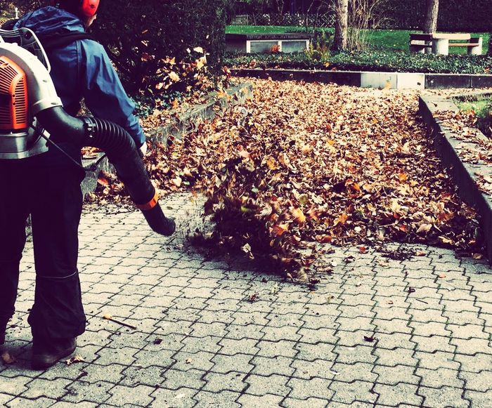 Urban Exploration EyeEm Nature Lover Outdoors Leaf Blower Nature In The City Workers At Work Fall_collection Fall Leaves Autumn Rear View Urbanphotography Eyeemphonephotography Leading Lines