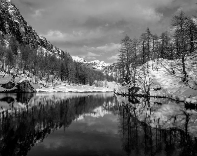 BW. Lago delle Streghe. BW. Lake of the Witches. Tree Sky Cloud - Sky Scenics - Nature Tranquility Tranquil Scene No People Mountain Outdoors Beauty In Nature Blue Nature Landscape Land Lake Snow Snowcapped Mountain Tranquility Relaxing Reflection EyeEm Best Shots EyeEmNewHere EyeEm Nature Lover EyeEm Selects EyeEm Gallery