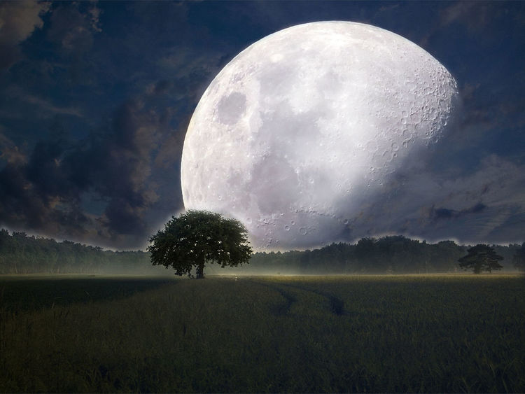 Moon Nature Astronomy Freshness Night Field Tranquility ...