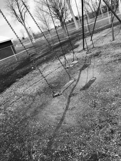 Swinging Swing Tree Plant Nature Day No People Shadow High Angle View Grass Outdoors Park