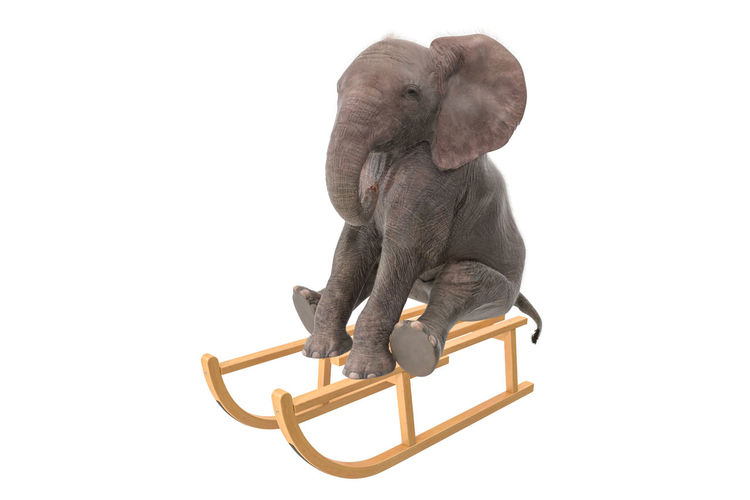 Studio Shot White Background Indoors  Copy Space Cut Out Art And Craft Craft Wood - Material One Person Seat Full Length Close-up Creativity Sitting Metal Representation Chair Portrait Elephant Sleigh
