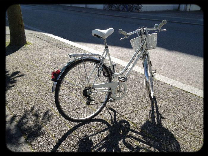Bicycle Lucerne White