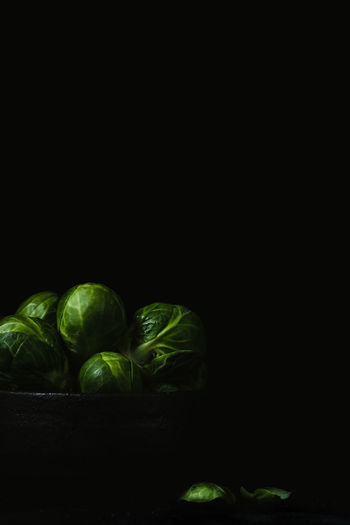 brussels sprouts in a dark bowl on dark black background   foodphotography Vegetable Healthy Eating Food Wellbeing Freshness Studio Shot Green Color Indoors  Black Background No People Copy Space Still Life Brussels Sprout Close-up Raw Food Food Photography Foodphotography Vegetarian Food Nikonphotography negative space