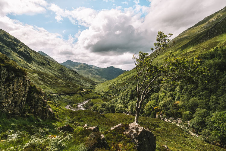 Beauty In Nature Cloud - Sky Day Glen Shiel Green Color Landscape Mountain Mountain Range Nature No People Outdoors Scenics Scotland Highlands Sculpture Sky Tranquil Scene Tranquility Tree