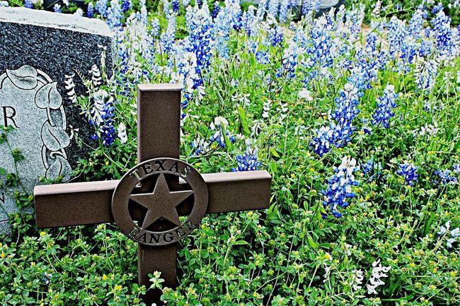 Texas Rangers Cross Bluebonnet Graveyard Beauty Texas Resting Place Pontotoc TX Union Band Cemetery Spring Flowers