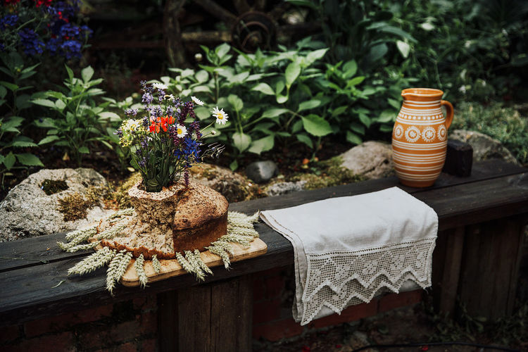 Close-up of potted plant and national bread on table