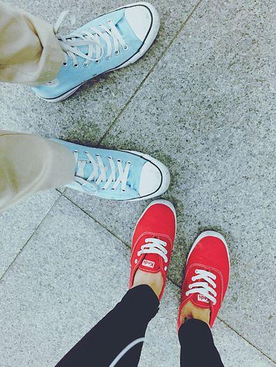 Colors Converse Vans Shoes Couple Kicks