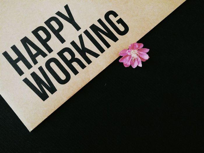 Mùng 5 - Ngày nghỉ cuối cùng, cuộc sống thường nhật dần trở lại, có người đã bắt đầu đi làm. Chúc mọi nguời một năm làm việc nhiều thành quả. Happy Working Minimalism Art Design Creative Inspiration Motivation Vietnam Smart Simplicity Happy