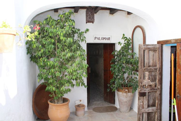 Palomar de la Breña Plant Potted Plant Growth Architecture Built Structure Nature Text