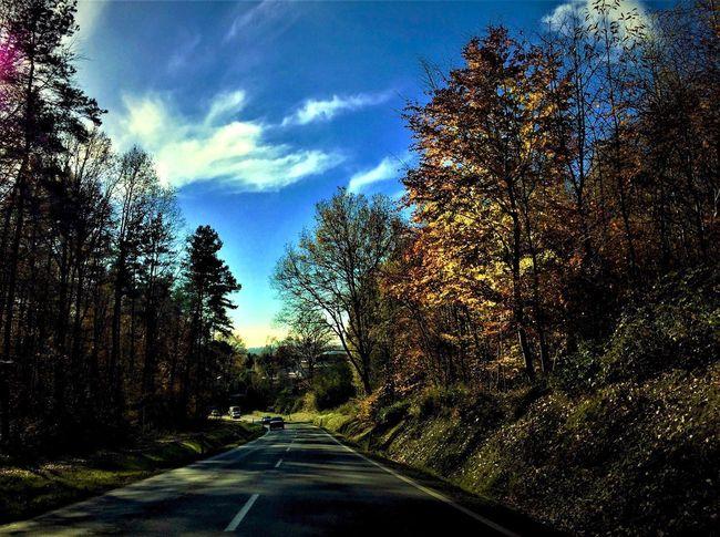 Eyeem Streetphotography EyeEm Best Shots Autumn Colors Beauty In Nature Street Photography Transportation EyeEm The Street Photographer - 2017 EyeEm Awards
