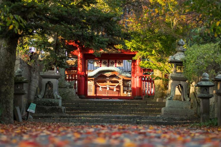Japan Photography Asian  Asian Culture Feng Shui Japan Japan Photography Japanese  Shrine Shrine Of Japan Shrines & Temples Travel Photography Tempel Temple Zen