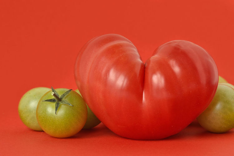 Heart shaped tomato and green tomatoes on red background Benefit Diet Green Love Natural Red Shape Vegetarian Food Antioxidant Beef Heart Tomato Cholesterol Coeur De Beuf Concept Creative Food Health Healthy Heart Ideas Nutrition Organic Tomato Tomatoes Vegan Vegetable