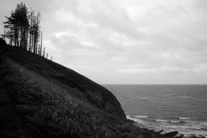 Trees Guarding The Land Trees Beauty In Nature Blackandwhite Cloud - Sky Hill Horizon Horizon Over Water Land Nature Rock Scenics - Nature Sea Sky Tranquil Scene Tranquility Water