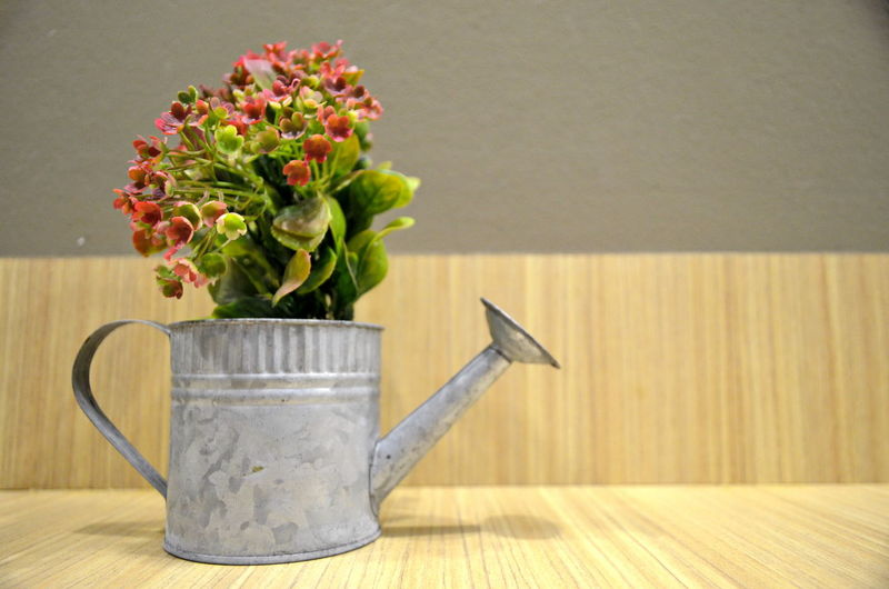Potted flowers Easter Plant Nature No People Close-up Freshness Flower Table Flowering Plant Vase Indoors  Beauty In Nature Wood - Material Still Life Fragility Vulnerability  Flower Arrangement Flower Head Wall - Building Feature Growth Pour Spout Bouquet Pitcher - Jug Silver Colored Backgrounds
