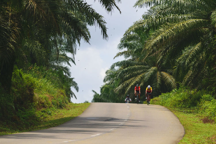 Men Cycling On Road Amidst Trees Against Sky