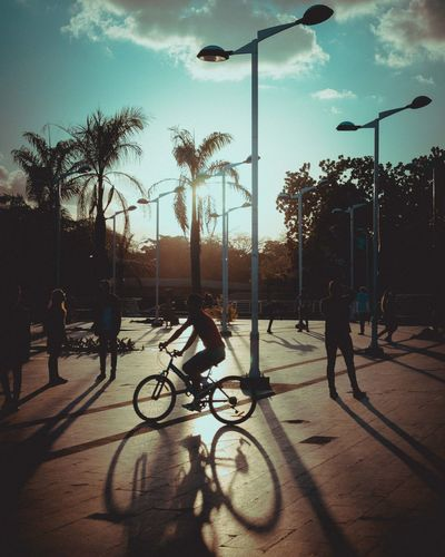 La vuelta de la tarde Architecture Bicycle Built Structure Cloud - Sky Cycling Day Full Length Land Vehicle Leisure Activity Lifestyles Men Mode Of Transport Outdoors Palm Tree Real People Road Shadow Silhouette Sky Street Sunlight Transportation Tree Two People Women