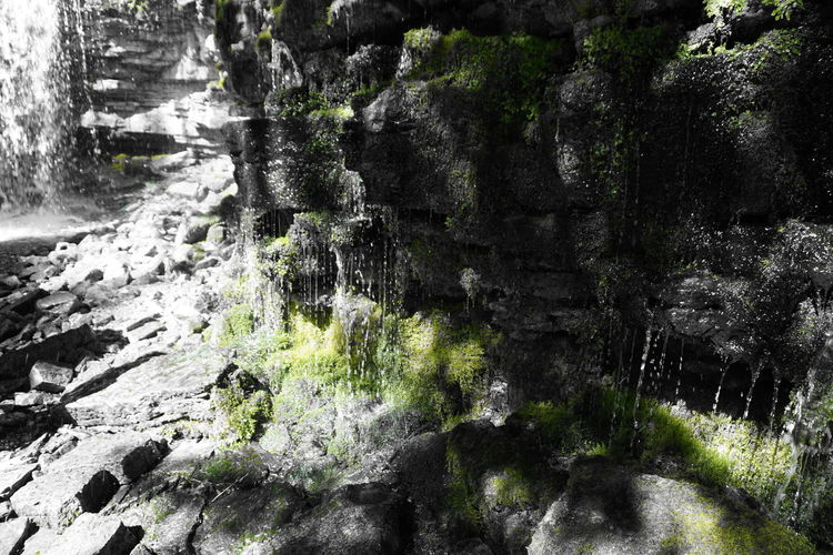 Waterfall Hilton Falls