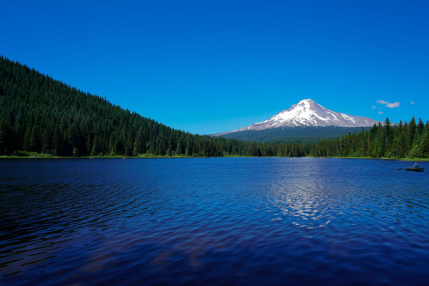 Trillium Lake at the base of Mount Hood in Oregon is a must see if your in the area. Canoeing Evergreen Trees Oregon Road Scenic Sunny View Beauty In Nature Blue Clear Sky Day Lake Landscape Mountain Nature No People Outdoors Scenics Sky Snow Snow Capped Mountain Summer Tranquil Scene Tranquility Trillium Lake