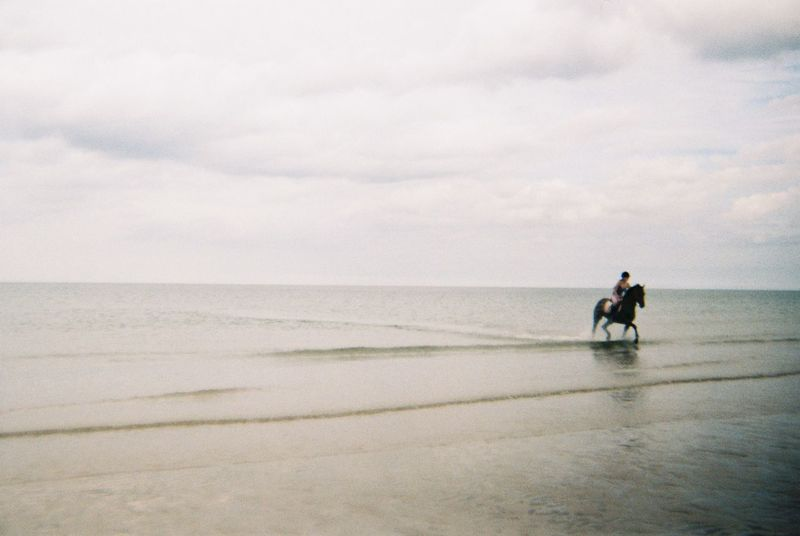 Horse rider emerging from the calm cold sea. Beach Beauty In Nature Day Domestic Animals Full Length Grainy Horizon Over Water Horse Leisure Activity Lifestyles Mammal Nature Outdoors Real People Rear View Sand Scenics Sea Sky Standing Togetherness Tranquil Scene Tranquility Walking Water
