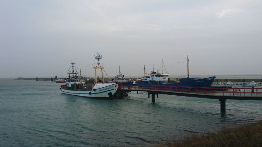 Harbour life, boats for rent for fishing trips at sea to catch your own dinner Zeeland  Oosterschelde Deltawerken Holland Travel Zeeland❤️ Food Food Stories Nautical Vessel Sea Business Finance And Industry Harbor Commercial Dock Beach No People Water