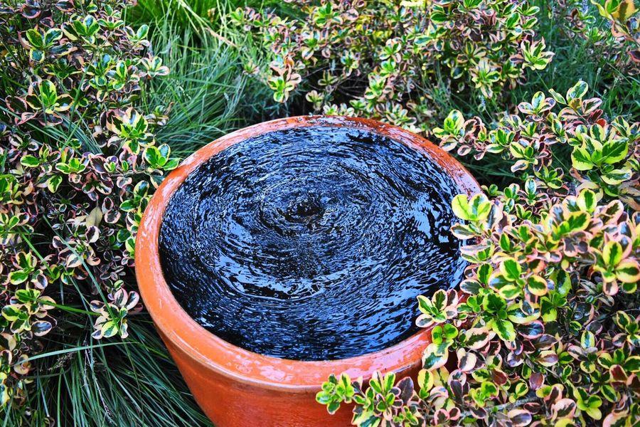 Garden Fountain Garden Photography The Great Outdoors Waterscape Landscape Art Big Sur, Ca. Hidden Beauty