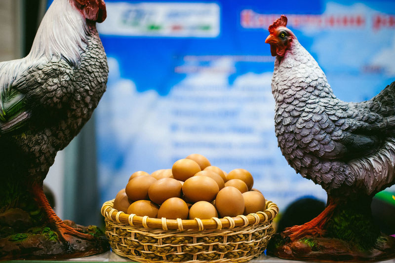 Close-up of chicken sculptures by eggs in basket at table
