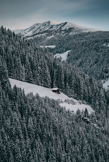 Lonely cabin