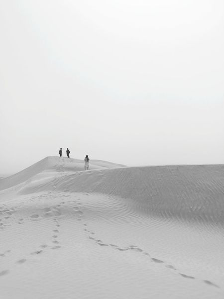Sand Dune Full Length Sea Desert Beach Dog Sand Low Tide Silhouette Barren