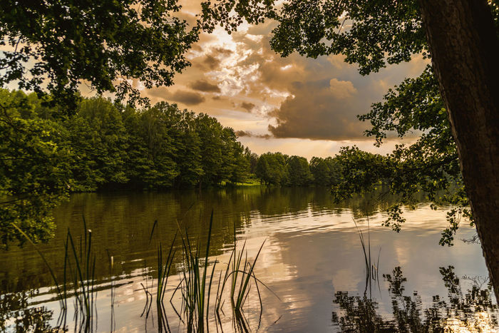 EyeEm Best Shots Landscape_Collection Clouds Landscape Nature Outdoors HDR Lakeside Tree Water Lake Sunset Reflection Sky