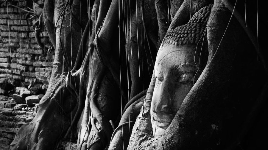 Close-up of buddha statue in abandoned temple