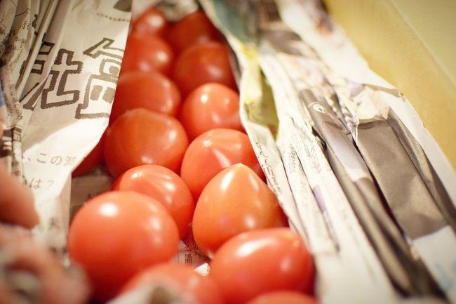 Pomodoro トマト Tomato Day Food Nature Plant 赤い 野菜 ルビー 赤い うまい Japan 東京