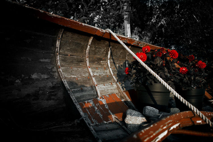High angle view of red boat against trees