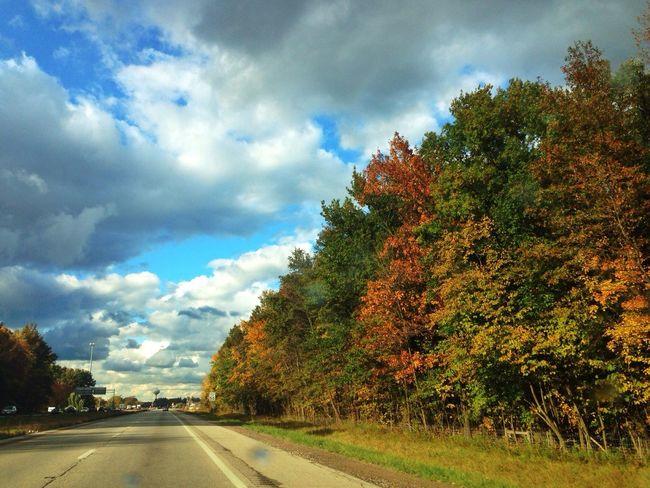 Autumn Drive... EyeEm Nature Lover Autumn Colors