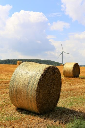 Rural Scene Hay Farm Nature Plant No People Field Landscape Agriculture Land Tranquil Scene Outdoors Scenics - Nature Tranquility Wind Power Fuel And Power Generation Wind Turbine Environment Sustainable Resources Sky Bale  Cloud - Sky Turbine