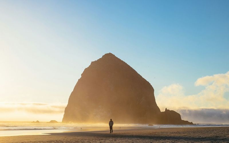 Lone My Best Photo 2015 Showcase: December Sunset Fog Picturing Individuality EyeEm Best Shots Landscape Oregon Beach The Essence Of Summer Feel The Journey The Great Outdoors - 2016 EyeEm Awards Be. Ready. Perspectives On Nature