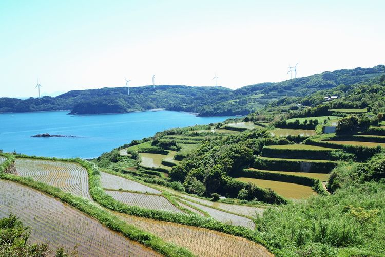 あづち大島 Island Life Rice Terraces Hirado Nagasaki Landscape Sea View