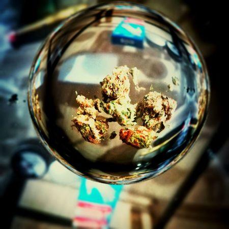 New new new Cannabis Fun P10lite Cropped Huawei New Budda Haze Glass Ball EyeEm Selects Reflection Close-up Glass - Material