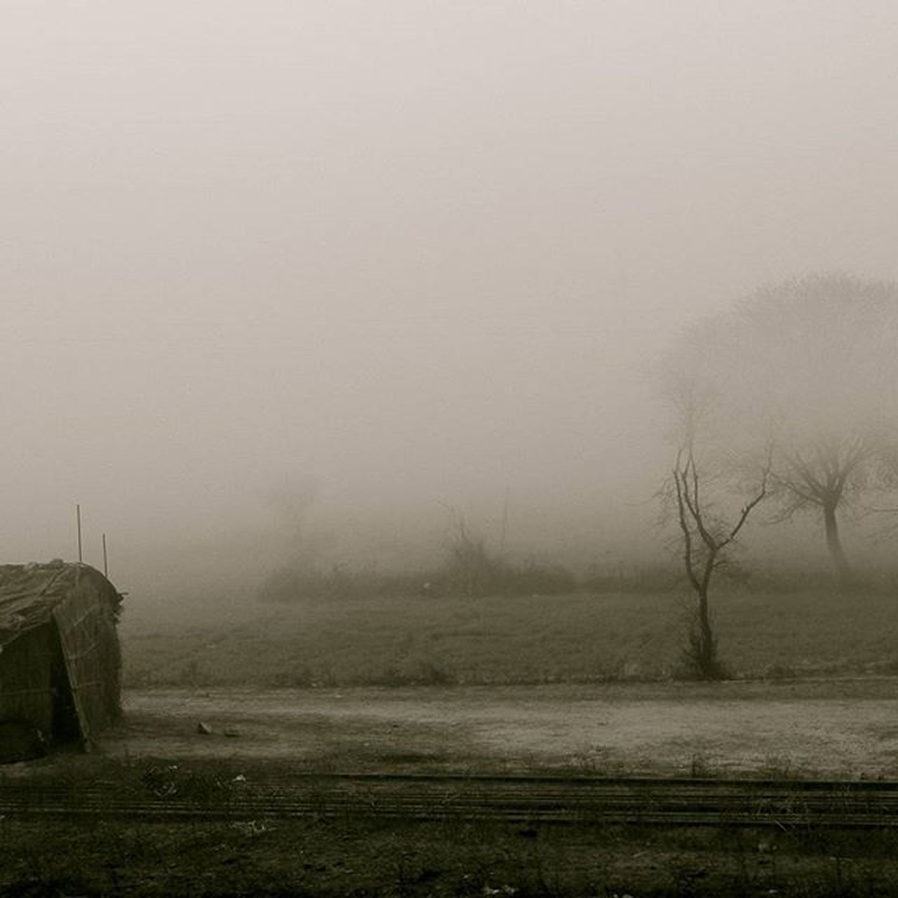 fog, landscape, tranquility, mist, no people, nature, field, beauty in nature, outdoors, hazy, scenics, spooky, winter, day, grass, cold temperature, tree, sky