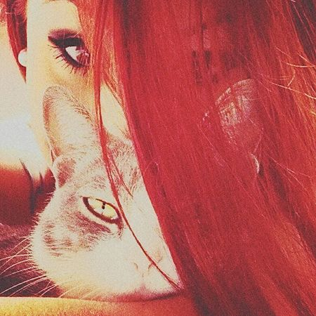 Cherry, My Cat 💞🙈🐱