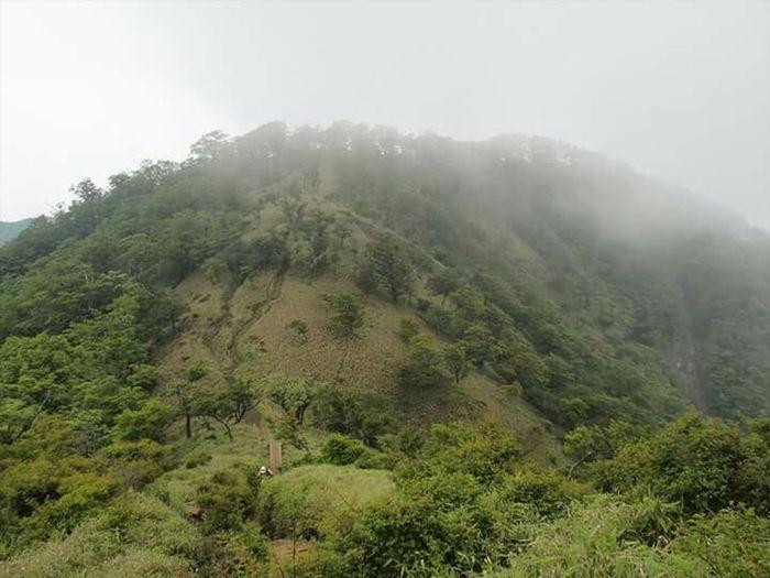 樹林帯、岩場、草原、鎖場、色々楽しめる丹沢表尾根 オススメです(´-`) EyeEm Nature Lover Landscape Mountains Clouds And Sky Nature Japan ~カメログまたここで~ Photography EyeEm Best Shots