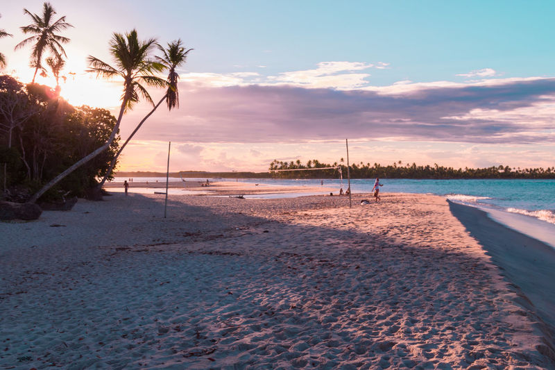 Tree Water Sea Sunset Beach Beauty Wave Sand Blue Summer Coconut Coconut Palm Tree Tropical Tree Bay Of Water Marram Grass Seascape Island Caribbean Beach Holiday Postcard