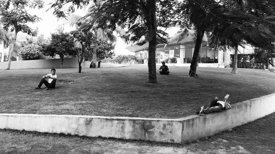 错落有致 Mobile Phone IPhoneography IPhone Mobilephotography Iphoneonly Tree Plant Real People Men Day Nature Architecture City Street Park Leisure Activity Group Of People Lifestyles Outdoors Built Structure People Vertebrate Footpath