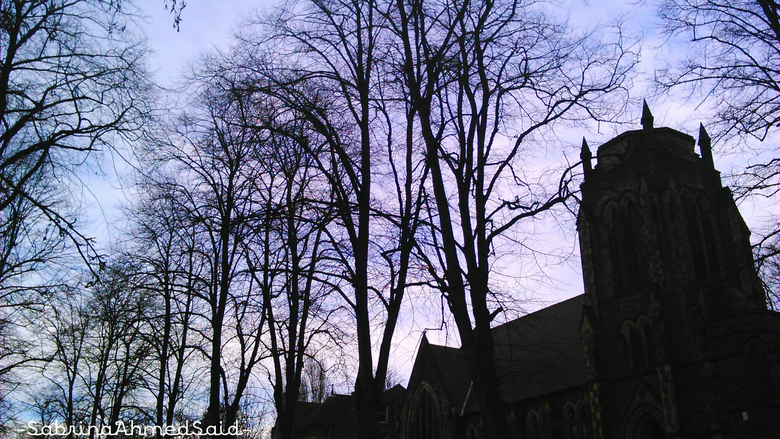 bare tree, tree, architecture, built structure, building exterior, silhouette, branch, low angle view, sky, tower, clear sky, tall - high, tree trunk, religion, no people, outdoors, nature, place of worship, spirituality