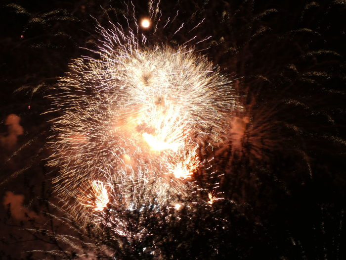 Night Firework Motion Firework Display Celebration Exploding No People Event Illuminated Arts Culture And Entertainment Firework - Man Made Object