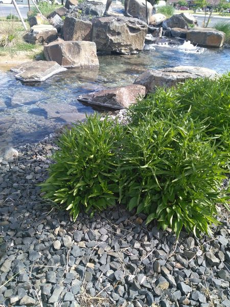 Water Day No People Nature High Angle View Outdoors Sunlight Beach Grass Beauty In Nature Man Made Structure Water Reflections EyeEm Liv'n The Dream Traveling Plant Plants Grass Rocks Rocks And Water Rock Formation Man Made Rock - Object Man Made Object Growth