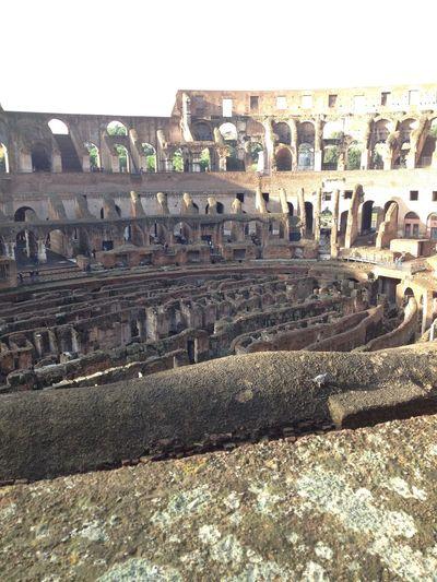 Colesseum Rome Italy🇮🇹 First Eyeem Photo
