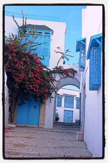 Blue House Village Beautiful