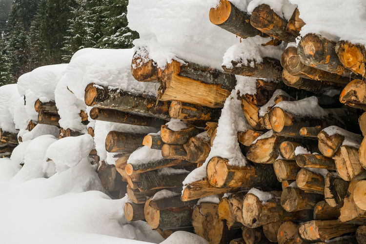 Large pile or stock of firewood for heating furnace covered with snow Large Pile Or Stock Of Firewood For Heating Furnace Covered With Snow Snow Winter Cold Temperature Wood - Material Nature Stack Day No People Log Tree White Color Frozen Wood Timber Representation Large Group Of Objects Outdoors Covering Forest Extreme Weather