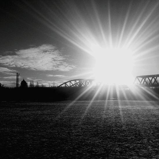 Sunlight Lens Flare Sun Sunbeam Sunset Outdoors Nature Cityscapes Walking Around Black & White
