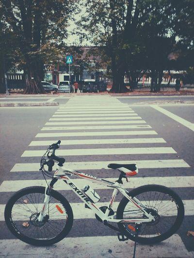Lenovo A600 Mobile Photography Mobilephoto Enjoying Life Bike Bogor Mobile Vcso Vcsocam Gowes